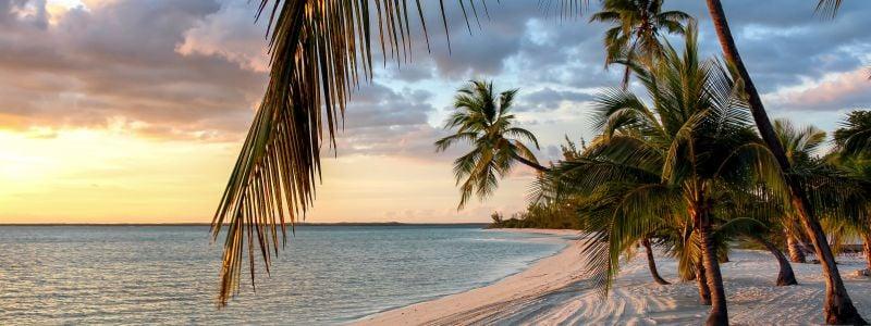 Bahama Napsu