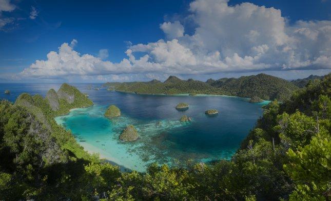 Papua Uusi Guinea Napsu