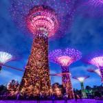Aasialaisen suurkaupungin keskustasta löytyy futuristinen puutarha: Singaporen vehreä helmi on Gardens by the Bay