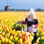 Keväistä kukkaloistoa maailmalta - 10 hurmaavaa kuvaa vievät virtuaalimatkalle