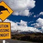 Uuden-Seelannin Tongarirossa voi seikkailla vaeltamalla aktiivisella tulivuorella!
