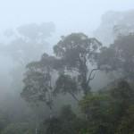 Etsitkö luontoelämyksiä? Katso tästä vinkit maailman kiehtovimpiin luontokohteisiin