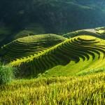 Suuntana Pohjois-Vietnam? Älä missaa tätä näkyä syksyllä!