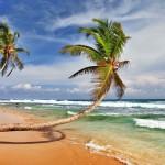 5 syytä lisätä Sri Lanka matkatoivelistalle!