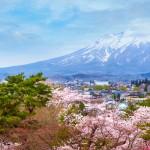 Puuterilunta, huimia maisemia ja suloisia koiria - Ota Japanissa suunnaksi Tohokun alue