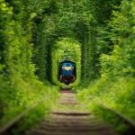 """Satumaista! Häkellyttävän kaunis """"Rakkauden tunneli"""" löytyy Ukrainasta"""